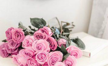 Znaczenie kolorów róż